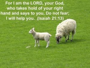 Isaiah 21:13